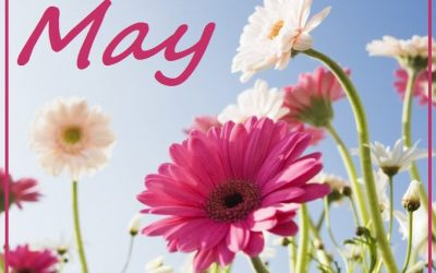 Recreation & Menu Calendars – May 2017