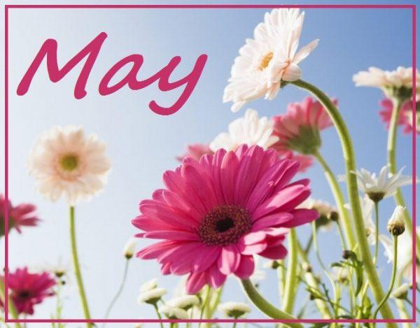Recreation & Menu Calendars – May 2017