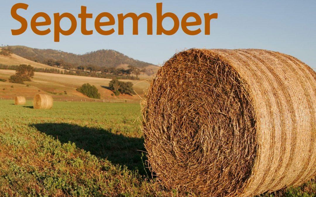 Activity Calendar with Newsletter & Menu Calendar – September 2017