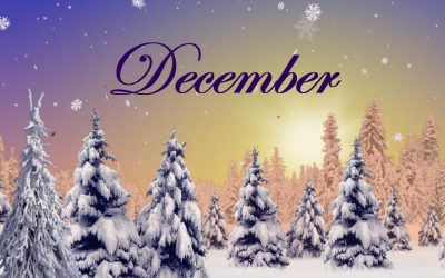 Activity Calendar with Newsletter & Menu Calendar – December 2017