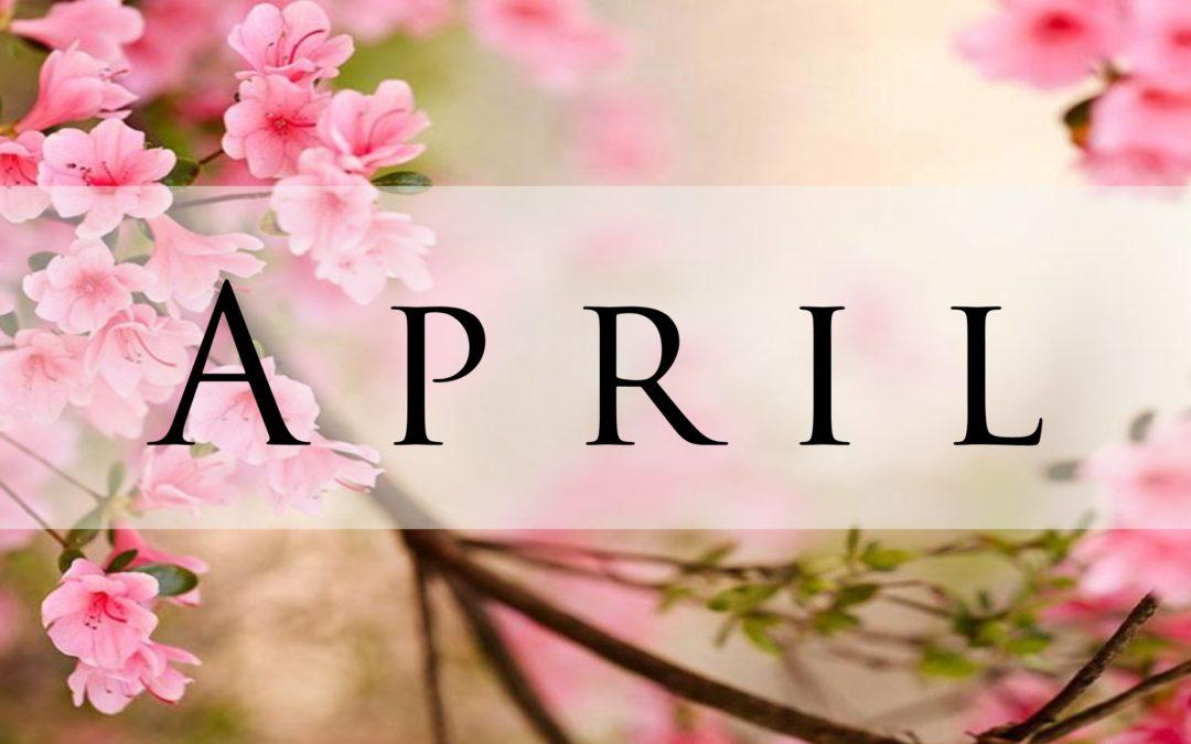 Activity Calendar with Newsletter & Menu Calendar
