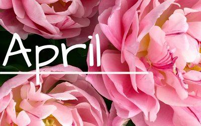 April Menu Calendar & Newsletter/Activity Calendar