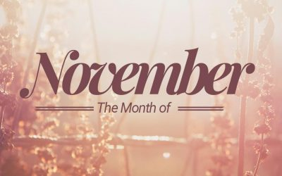 November 2019 Newsletter/Activity Calendar & Menu Calendar