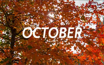 October 2020 Newsletter/Activity Calendar & Weekly Menu Calendar